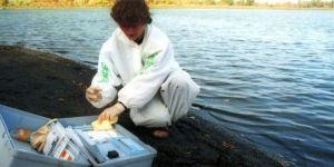 المياه المشعة من فوكوشيما إلى السواحل الكندية