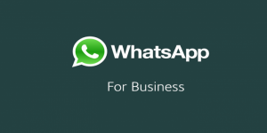 واتساب بزنس whatsapp business